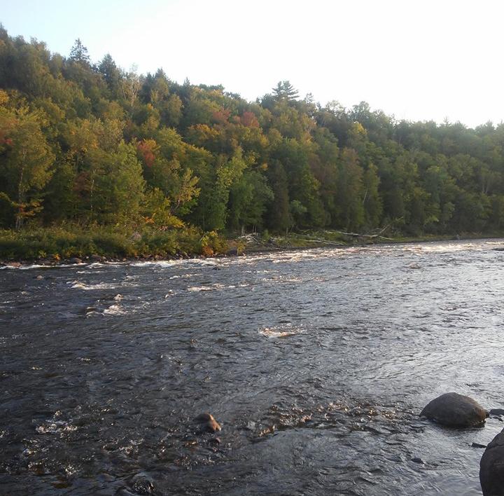Les bonheurs du camping d'automne